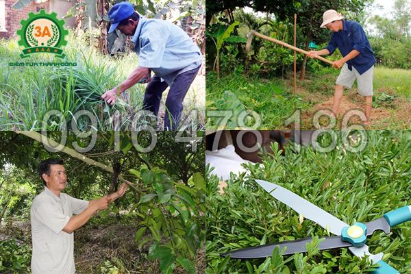 Máy làm vườn mini đa năng 3A giải phóng sức lao động cho bà con