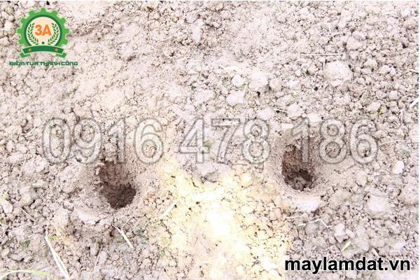 Sản phẩm của Máy khoan lỗ trồng rau 3A6,5Hp
